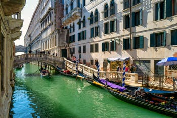 Gondolas on the del Palazzo Canal, in front of the Canonica Bridge, in the background, the Doge's Palace and the Bridge of Sighs, in the Saint-Mark District in Venice.