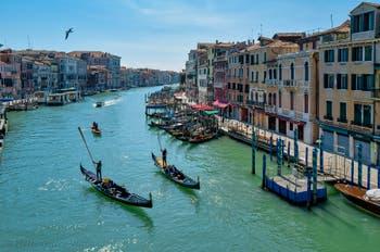 Gondolas on Venice Grand Canal