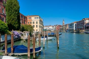 Wisteria on Venice Grand Canal.