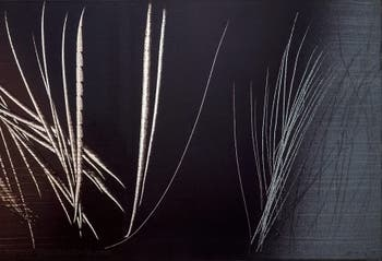 Hans Hartung,T 1962-E-15, at the Peggy Guggenheim Collection in Venice